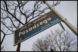Ulica ks. Ignacego Posadzego w Poznaniu